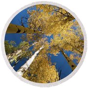 Round Beach Towel featuring the photograph Aspens Up by Steve Stuller