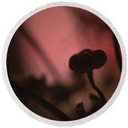 Aspiration With Ghost Round Beach Towel