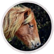 Assateague Horse Sarah's Sweet Tea Right Profile Round Beach Towel