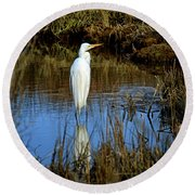 Assateague Island Great Egret Ardea Alba Round Beach Towel