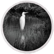 Assateague Island Great Egret Ardea Alba In Black And White Round Beach Towel