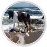 Assateague Pony Round Beach Towel