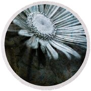 Aster On Rock Round Beach Towel