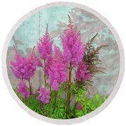 Round Beach Towel featuring the photograph Astilbe And Shadows by Randy Rosenberger