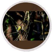 Round Beach Towel featuring the photograph At Days End by Barbara S Nickerson