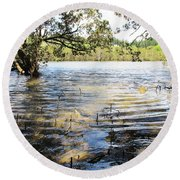 Round Beach Towel featuring the photograph At Muddy Shady Mangroves 2 by Dianne  Connolly
