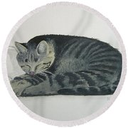 Round Beach Towel featuring the painting At Rest by Norm Starks