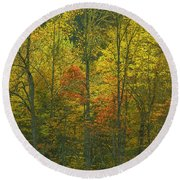 At The Edge Of The Forest Round Beach Towel