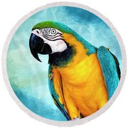 At The End Of My Perch Round Beach Towel by Cyndy Doty