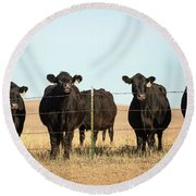 At The Fence Round Beach Towel