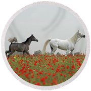 At The Poppies' Field... Round Beach Towel