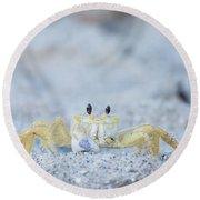 Atlantic Ghost Crab Round Beach Towel