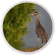 Round Beach Towel featuring the photograph Attentive Heron by Jean Noren