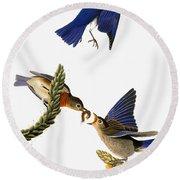 Audubon: Bluebird Round Beach Towel