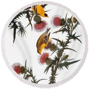 Audubon: Goldfinch Round Beach Towel