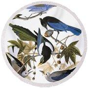 Audubon: Jay And Magpie Round Beach Towel