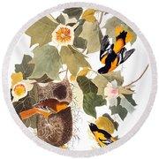 Audubon: Oriole Round Beach Towel