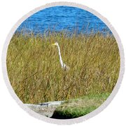 Audubon Park Sighting Round Beach Towel
