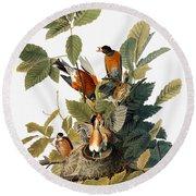 Audubon: Robin Round Beach Towel