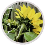 August Motif Round Beach Towel by Betsy Zimmerli