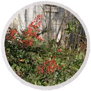 Round Beach Towel featuring the photograph Austin Winter Berries by Linda Phelps