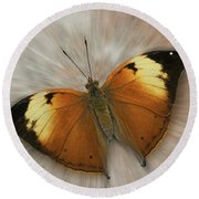 Autumn Leaf Butterfly Zoom Round Beach Towel