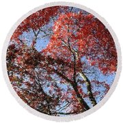 Autum Trees Illustrated Round Beach Towel