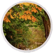 Round Beach Towel featuring the photograph Autumn Along The Bog Burn by RKAB Works