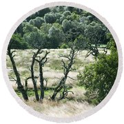 Autumn And Grass In Isle Of Skye, Uk Round Beach Towel