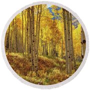 Autumn Aspen Forest Aspen Colorado Panorama Round Beach Towel