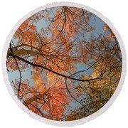 Autumn Aspens In The Sky Round Beach Towel