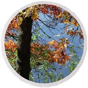 Autumn At Lebanon Hills Park 04 Round Beach Towel