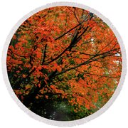 Autumn At The Window Round Beach Towel