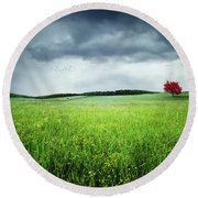 Round Beach Towel featuring the photograph Autumn by Bess Hamiti
