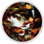 Autumn Changing Round Beach Towel
