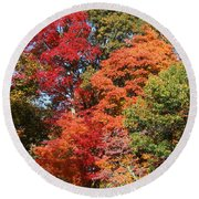 Round Beach Towel featuring the photograph Autumn Color Spray by William Selander