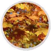 Round Beach Towel featuring the photograph Autumn Colors 3  by Angie Tirado