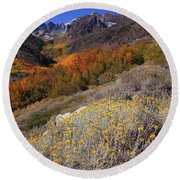 Autumn Colors At Mcgee Creek Canyon In The Eastern Sierras Round Beach Towel