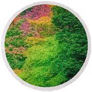 Autumn Colors On Acer Tree Leafs Round Beach Towel