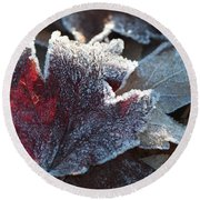 Round Beach Towel featuring the photograph Autumn Ends, Winter Begins 2 by Linda Lees