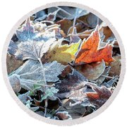 Round Beach Towel featuring the photograph Autumn Ends, Winter Begins 3 by Linda Lees