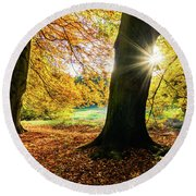 Autumn Evening In Saxony Round Beach Towel