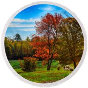 Autumn Field Round Beach Towel by Tricia Marchlik