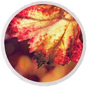 Autumn Fire Round Beach Towel by Melanie Alexandra Price
