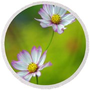 Round Beach Towel featuring the photograph Autumn Flowers by Byron Varvarigos