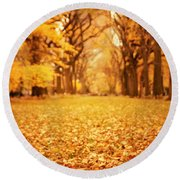 Autumn Foliage - Central Park - New York City Round Beach Towel
