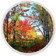 Round Beach Towel featuring the photograph Autumn Forest by Debbie Oppermann