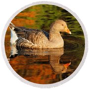 Autumn Goose Reflection Round Beach Towel
