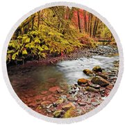 Autumn In An Oregon Rain Forest  Round Beach Towel