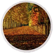 Round Beach Towel featuring the pyrography Autumn In Napa Valley by Bill Gallagher